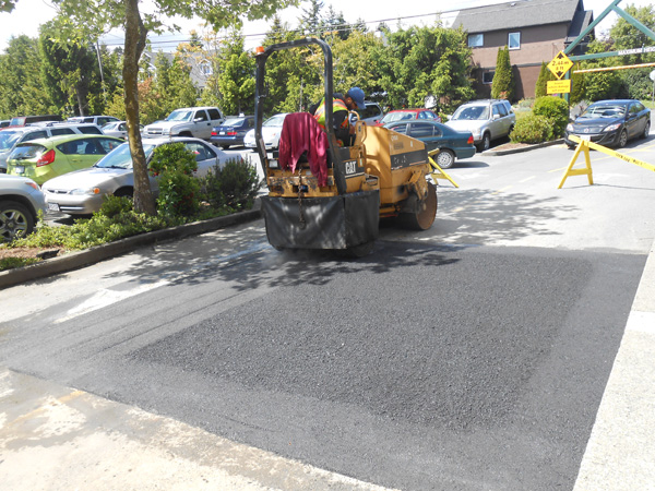 Royal Oak Mall asphalt patching (5)